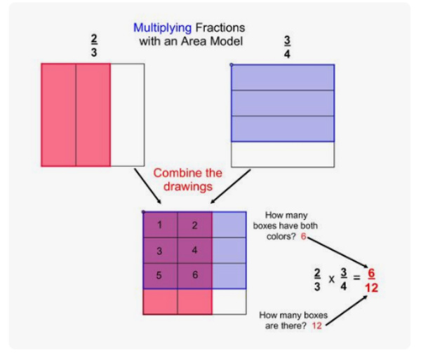 area model for multiplying fractions